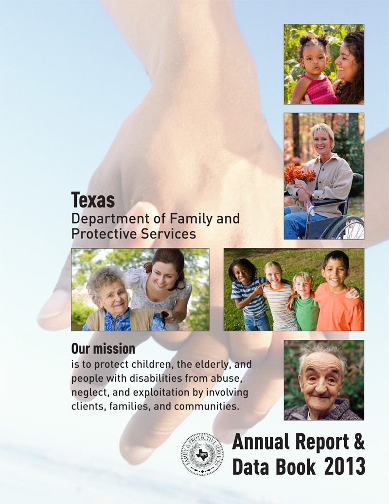Cover of 2013 Annual Report and Data Book