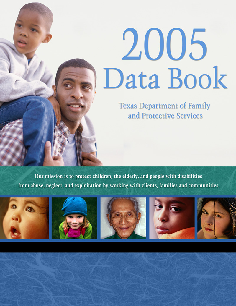 2005 DFPS Databook Cover